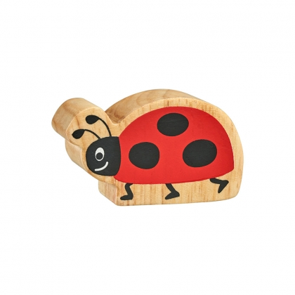 Natural red & black ladybird