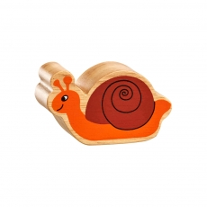 Natural brown and orange snail