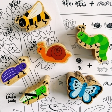 Minibeast activity sheets