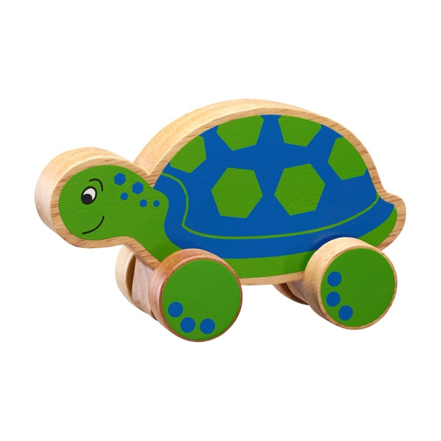 Chunky natural wood blue and green turtle on wheels push along