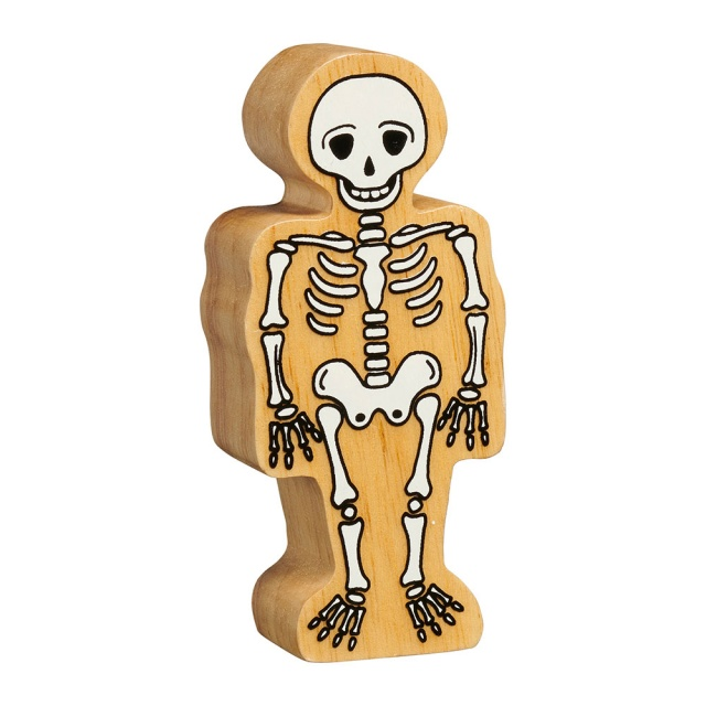 A chunky wooden white toy skeleton figure in profile with a natural wood edge